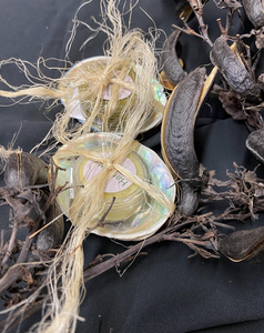 2 Small Pots of Harakeke Balm Wrapped in Paua Shells